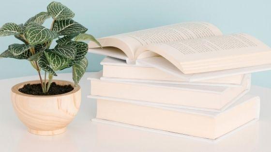 Set of books next to a green flower pot